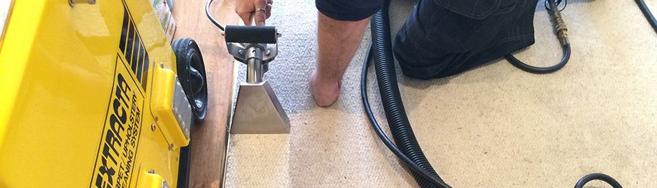 Hire a carpet cleaner stanley steamer solutioingenieria Image collections